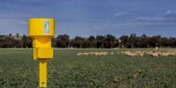 This Goanna Ag rain gauge will use Myriota's direct-to-orbit satellite network to share data with its owner. Picture: Julian Simon Nguyen.