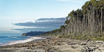 Tasman Sea in New Zealand (Image by Makalu from Pixabay)